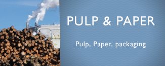 Fire protection in the Pulp and Paper industry